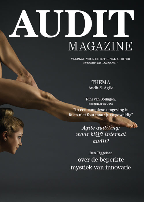 Audit Magazine